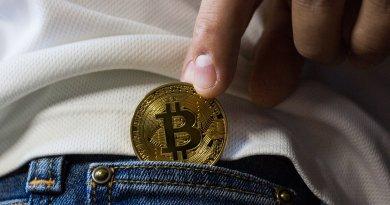 Bitcoin Kryptotagebuch Tagebuch